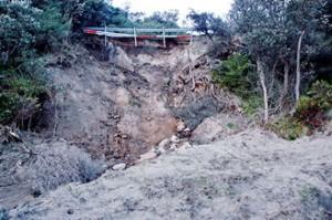 esplanade collapse