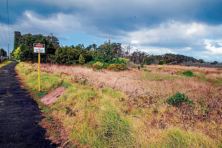 Fuelling expectations: Puma Energy's purchase of land in Bayview Rd, Hastings, has heightened hopes of more port-related development even though the state government has dropped plans for a container port. Picture: Gary Sissons
