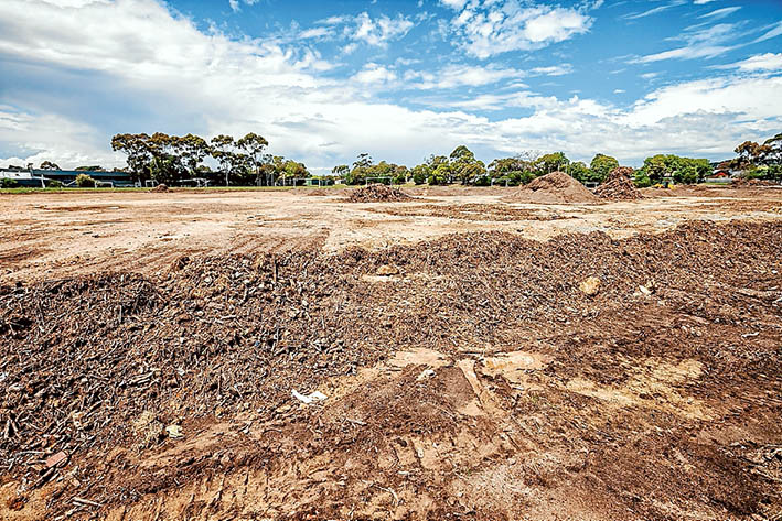 Balls not bush: Mt Eliza's leading environment group has walked away from a committee formed to deal with native vegetation clearing at the town's secondary college for soccer pitches. Picture: Yanni