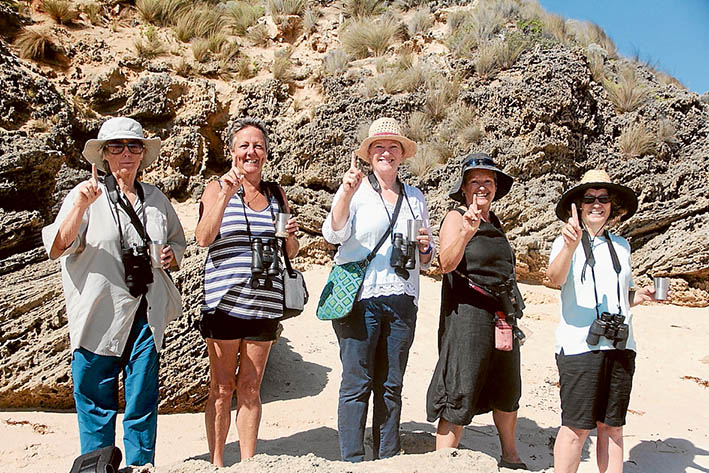 Plovers count: Volunteers, from left, Val Ford, Loos Greene, Karen Wooton, Jo Hansen and Rosalba Caterna, at Fowlers beach on the southern Mornington Peninsula where the first hooded plover chick of the season has managed to take flight.