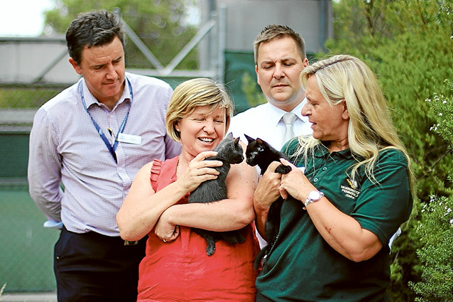 Feline friendly: Community Animal Shelter team leader Scott Morone, RSPCA Local Government Services manager Michelle Eeles, the shire's Environment Protection manager David Dobroszczyk and Community Animal Shelter coordinator Robyn Geer at the launch the Purrfect Match campaign.
