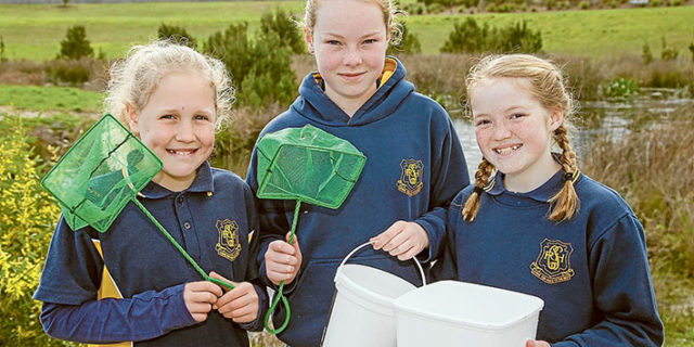 Seeing and caring: Red Hill Consolidated School's Kelsey, Ruby and Brianna use a net to check on life in the water at Narambi Reserve, above, while heavy lifting equipment, left, is needed to clear the gross pollution trap. Mornington. Pictures: Gary Sissons