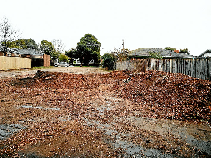 Remnant sawdust: Piles of sawdust are all that remain of two manna gums removed to make way for development at Hastings.