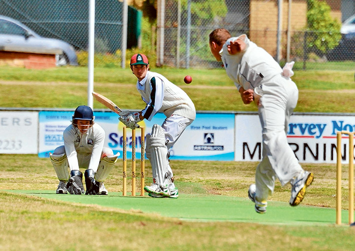 The great escape: Pines held off defeat and were 6/63 at stumps. Picture: Rab Siddhi